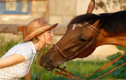 A guide on animal communication